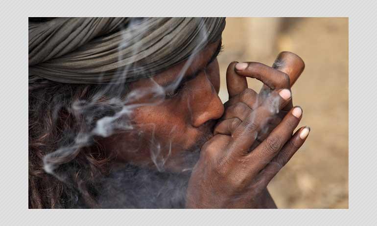 রিয়া চক্রবর্তীর গ্রেফতারি: ক্যানাবিস ও ভারতে তার আইনি অবস্থান